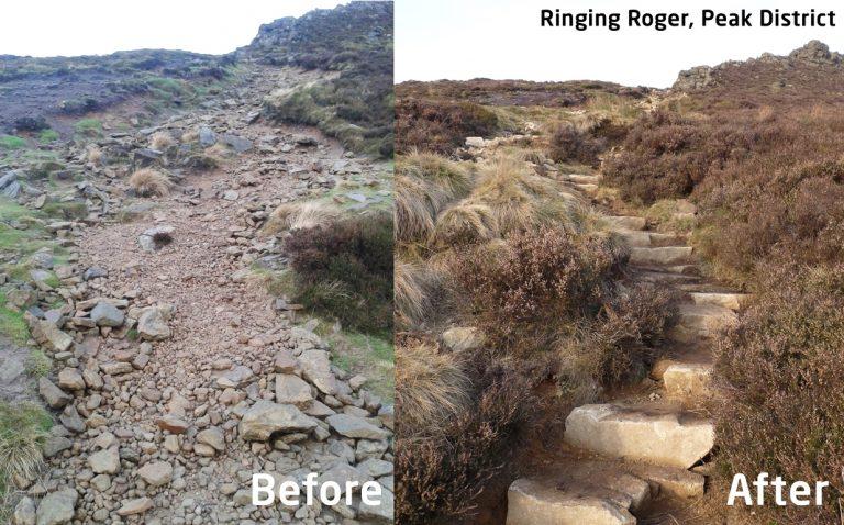 ringing-roger-768x478
